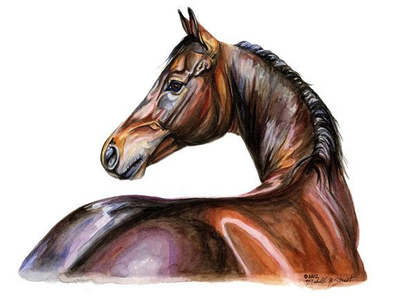 Colorful Thoroughbred Horse Art Print of Watercolor Painting Gift for the Horse Lover 9x12 $15.00