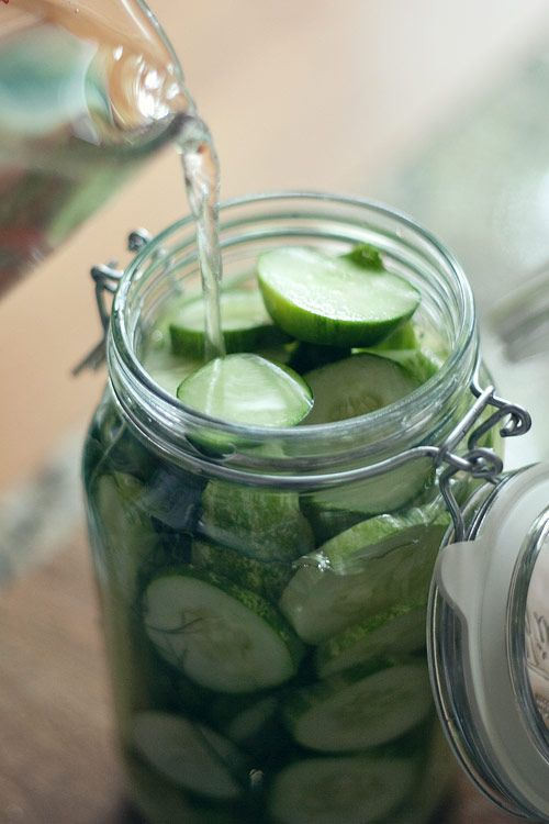 Pepinillos encurtidos caseros // homemade pickle recipe