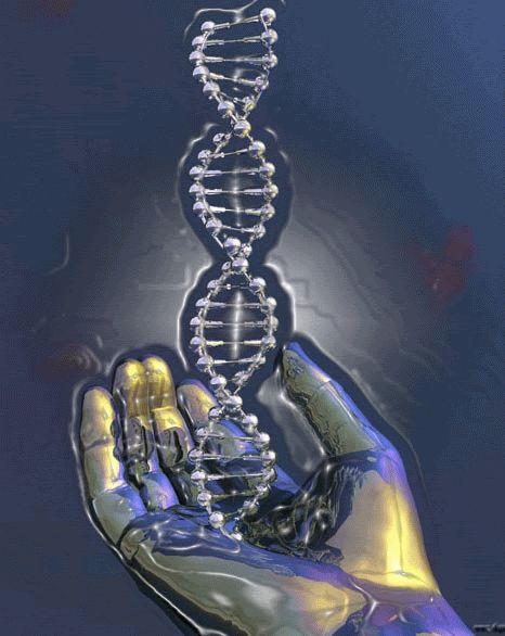 Секреты Хорошей Жизни: Измените свою ДНК