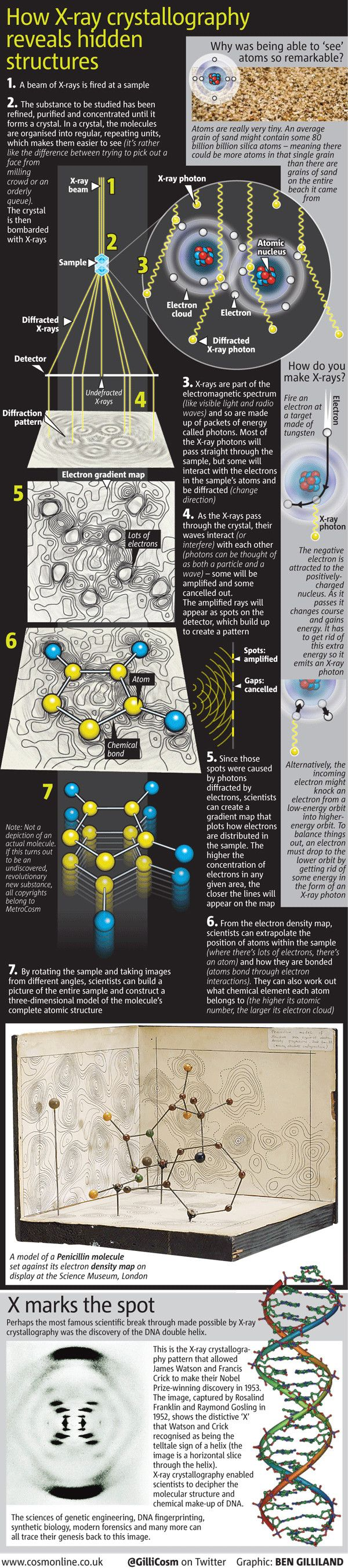 X-Ray Crystallography and the Discovery of DNA + Credit to Rosalind Franklin!