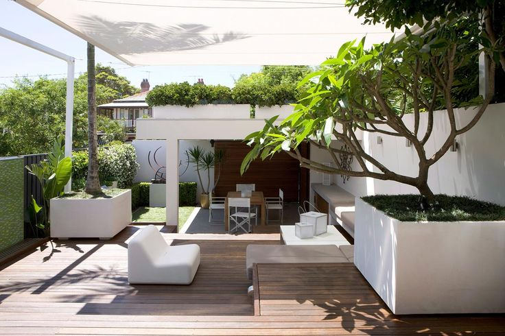 Frangipani trees, potted plants and furniture with simple lines are all ingredients of minimal, contemporary gardens. Photo: Jason Busch / bauersyndication.com.au
