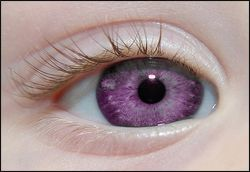 Yes, there is a website dedicated to purple contact lenses.