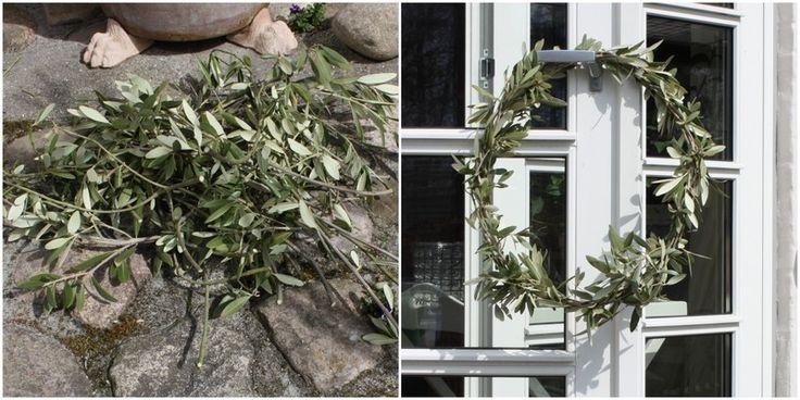 BESKÆR DIT OLIVENTRÆ OG LAV EN SMUK KRANS - Olive-leave-wreath