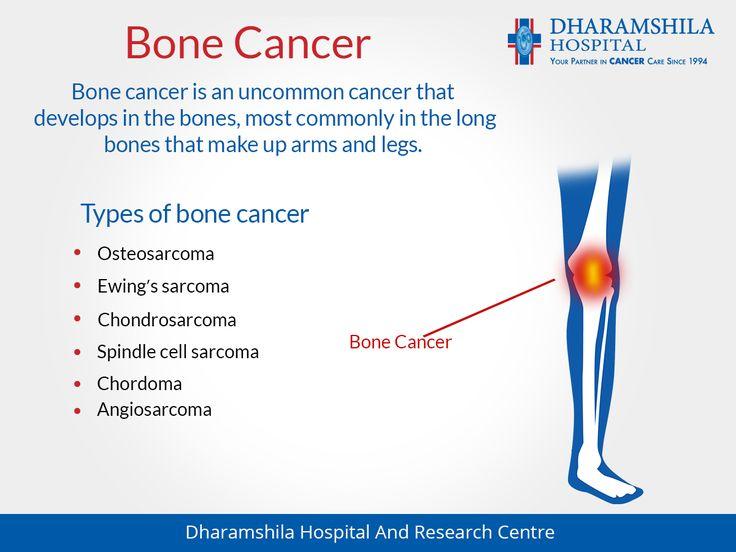 Dog Bone Cancer Natural Treatment