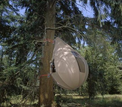 Treetents: le tende sospese come gocce sui rami degli alberi.  Originariamente progettate per un gruppo di attivisti inglesi che lottavano contro l'eccessiva costruzione di strade attraverso le foreste sono oggi una bella sorpresa in diversi campeggi olandesi