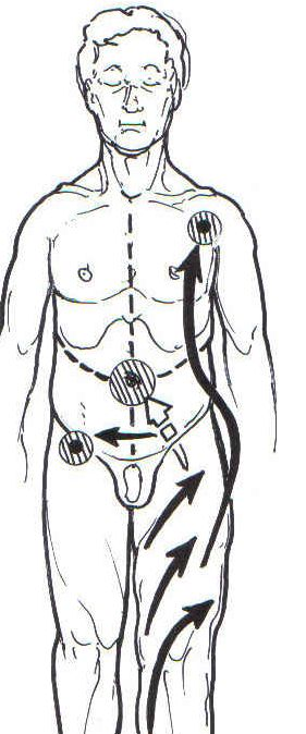 The Science behind Manual Lymph Drainage in the Treatment of Lymphedema « Lymphedema Blog
