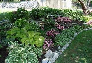 Nice shady garden