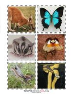 Preschool Printables Australia animals match game