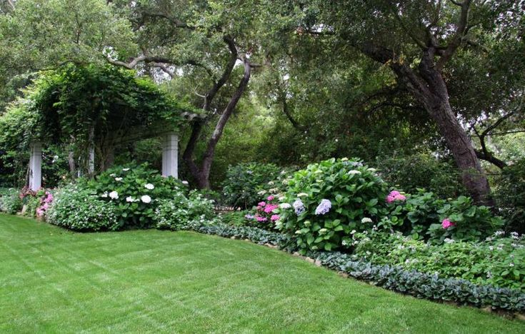 This cleanly-edged and lushly beautiful planting perfectly exemplifies the contrasts of Victorian landscape design. A controlled sense of cultivated exuberance. Designed by Donna Lynn Landscape Design in Santa Barbara, CA.