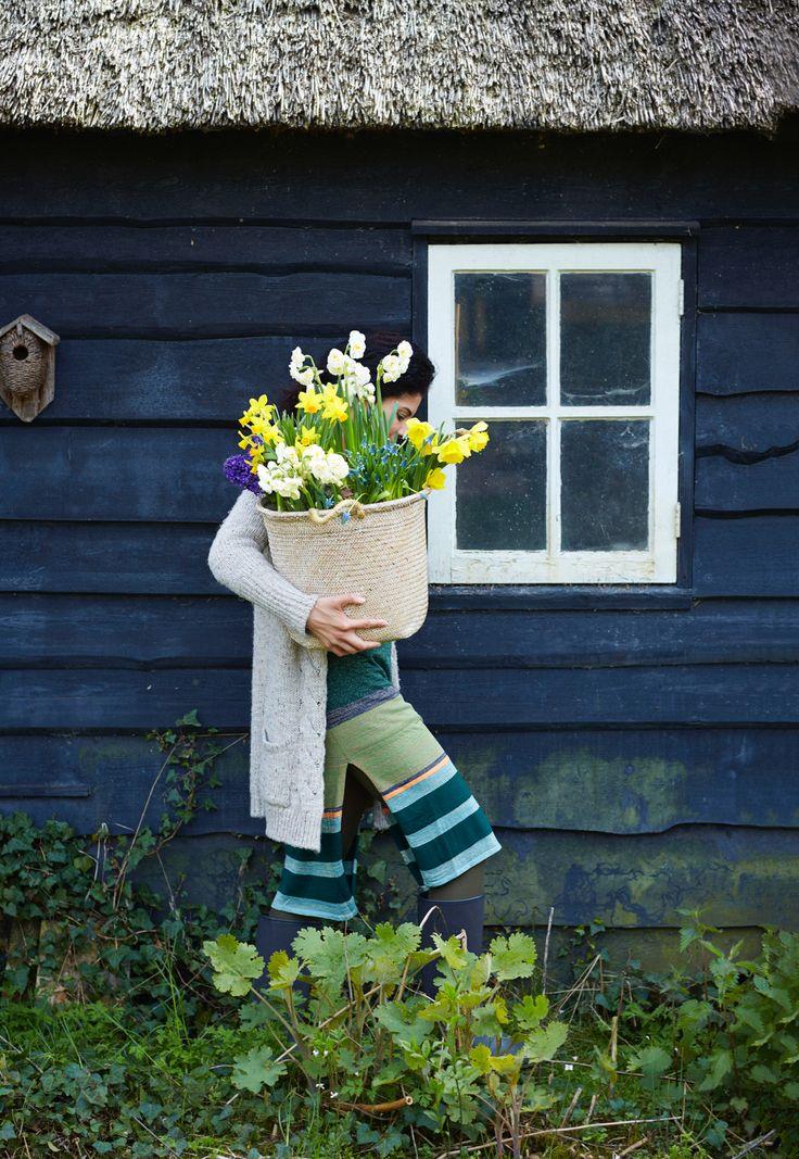 Ook zo toe aan kleur in de tuin? Gelukkig zijn ze er weer in tuincentra en bij bloemisten: bloeiende bollen in pot.