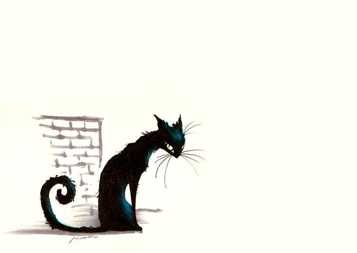 chat noir...