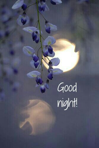 Good night! Thought this day would never end.