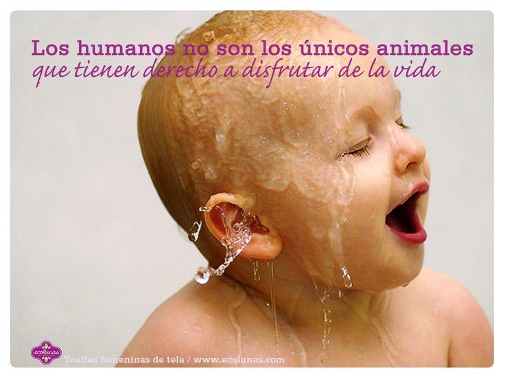 Los humanos no son los únicos animales que tienen derecho a disfrutar de la vida