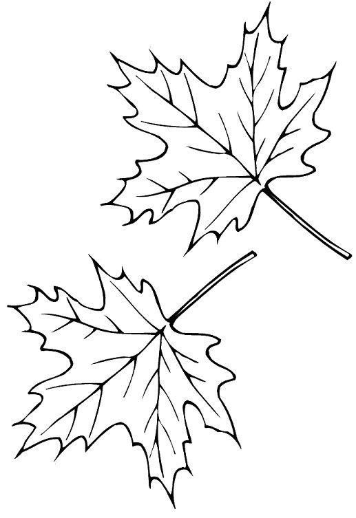кленовый лист шаблон картинки