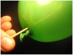 Balloon Kebab Experiment! - http://www.sublimescience.com/free-experiments/balloon-kebab.html