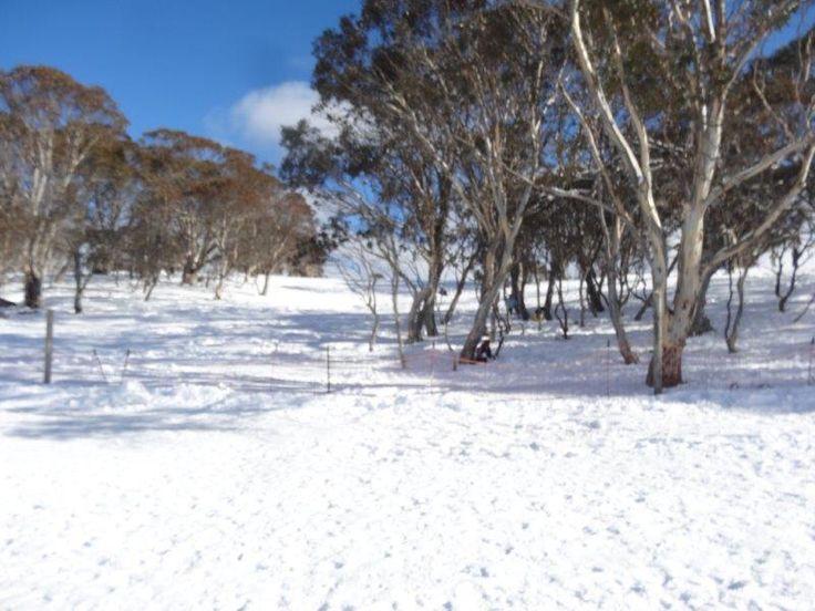 Mt Selwyn Snowfields Ski Resort