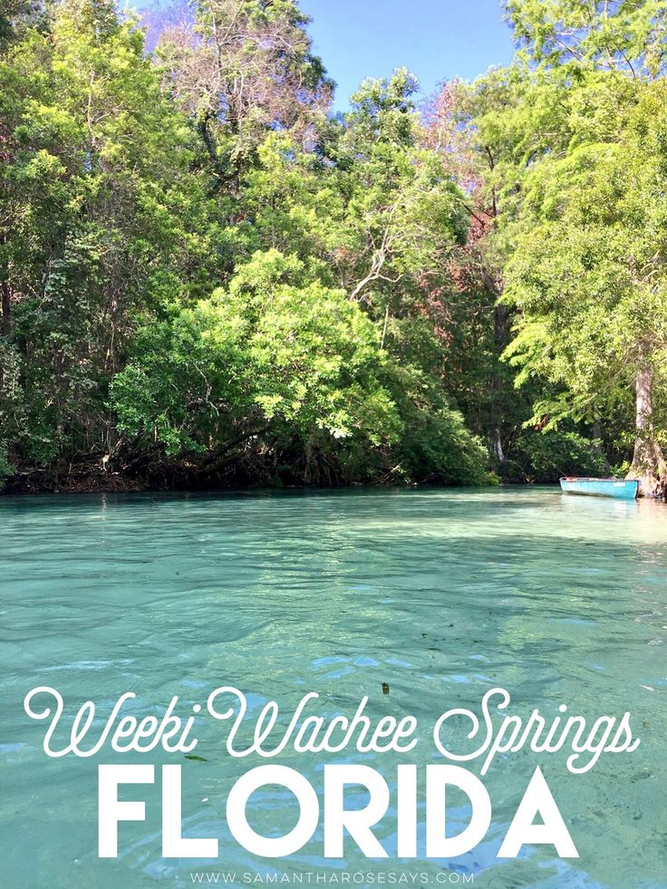 Samantha Rose Says: Exploring Florida | Weeki Wachee Springs.