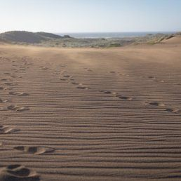 Manchester State Park - Manchester, CA, United States. Footsteps in the sand.