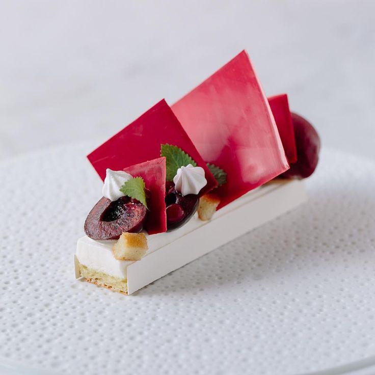 Sakura dessert, shot by @wolvestable #twiningsteauk