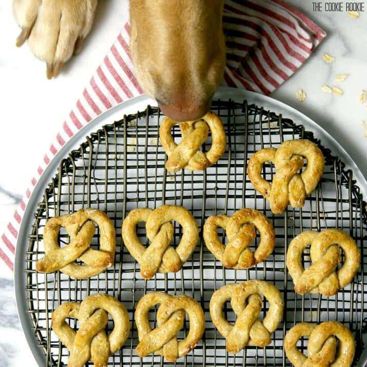 Oat and Apple Pretzel Dog Treats! These healthy and easy treats for your dog are made with only 4 ingredients! Make your pup happy! #HealthyDogFood