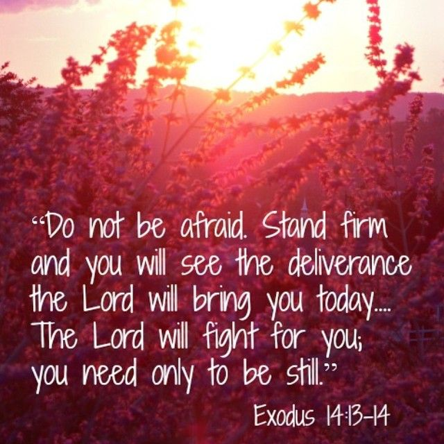 Don't be afraid. Stand firm. Exodus 14: 13-14