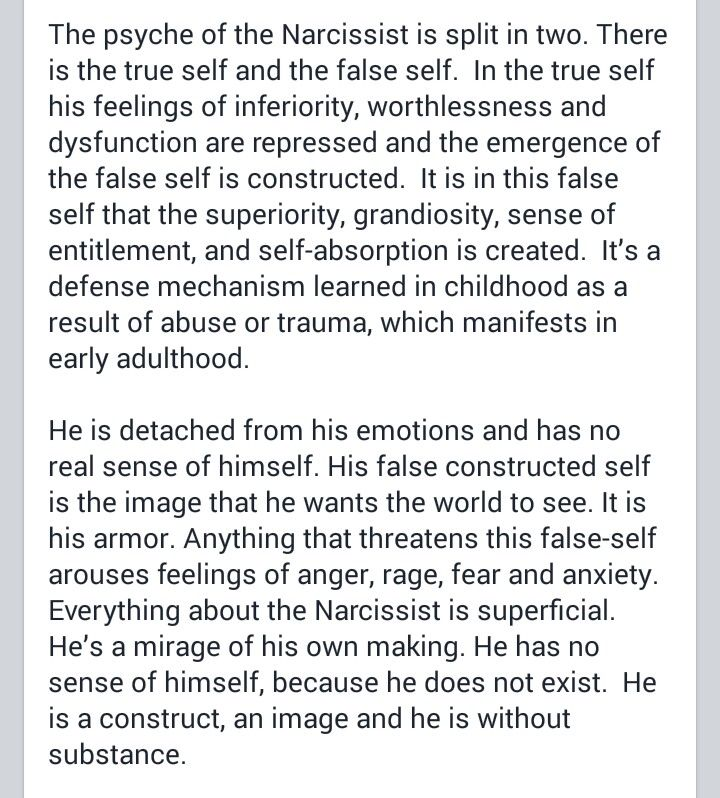 2/3 life of the narcissist.  A recovery from narcissistic sociopath relationship abuse.