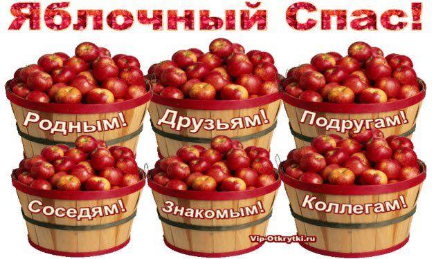 Картинки по запросу cherry tomatoes