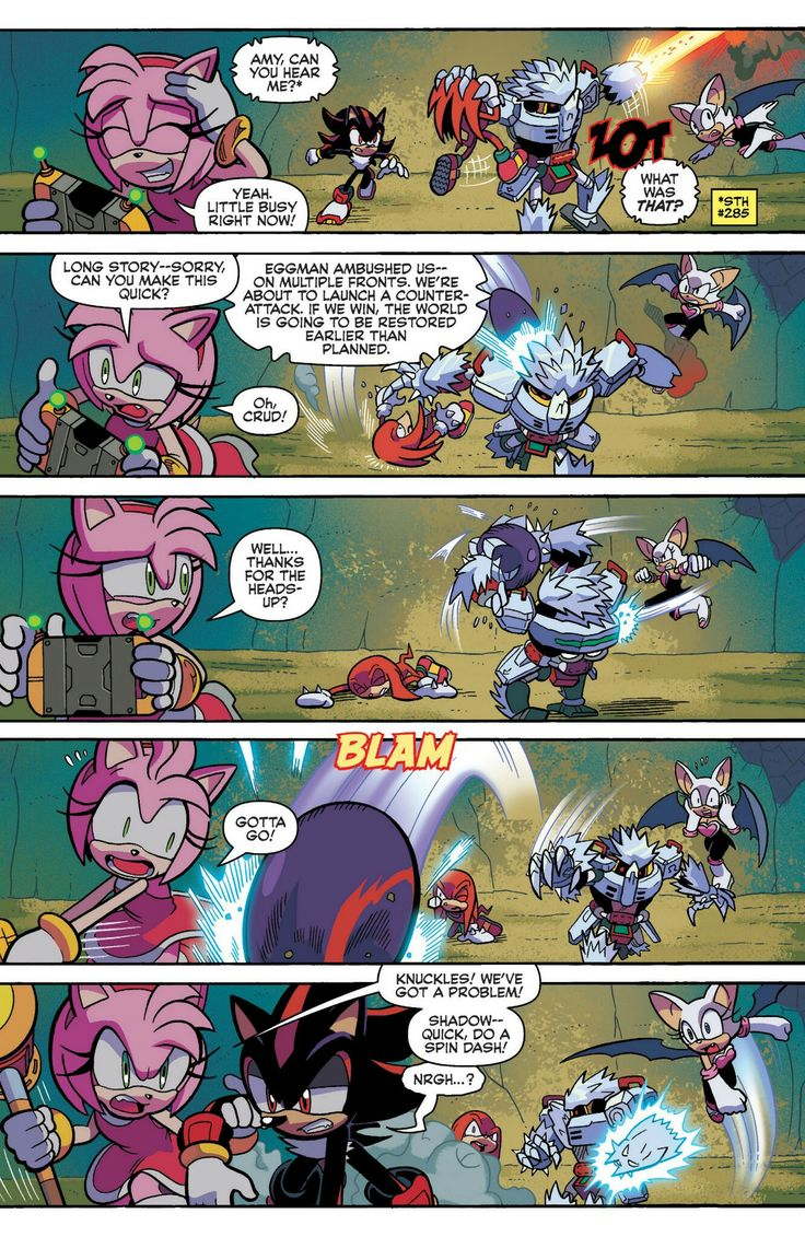 Mighty Armadillo And Amy Rose