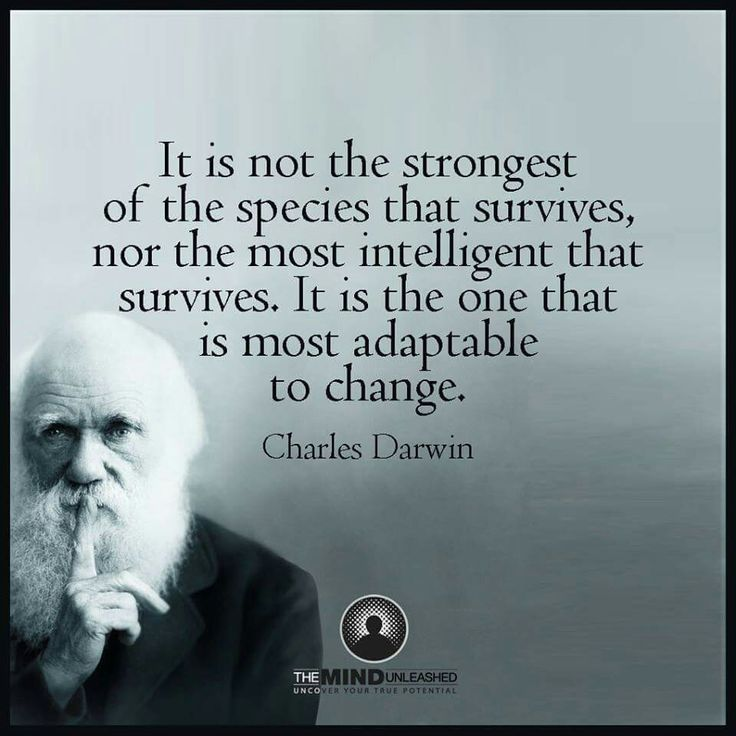Darwin Quotes: 164 Best Calm Images On Pinterest