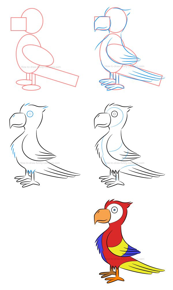 How to draw a parrot using various color palettes! :)