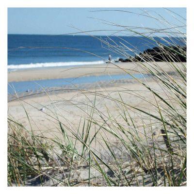 Strandlandschappen (fotografie) Afbeeldingen bij AllPosters.nl