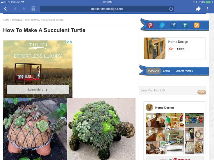 Pin By Janice Dickerson On Crafts Turtle Homes House Design Design