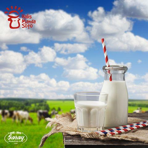 Konsantre yem ile beslenen mandalardan elde ettiğimiz süt, vücut için doğal bir enerji içeceğidir.