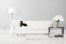 witte chesterfield