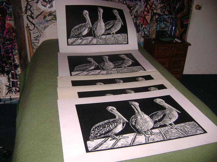 xilografia pelicanos