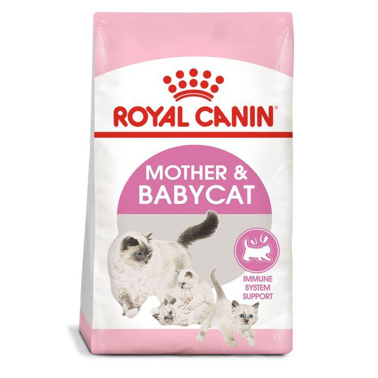 Royal Canin Feline Health Nutrition Mother Babycat Food In 2020 Feline Health Dry Cat Food Newborn Kittens