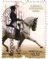 CAVALO LUSITANO - ENSINO - PORTUGAL
