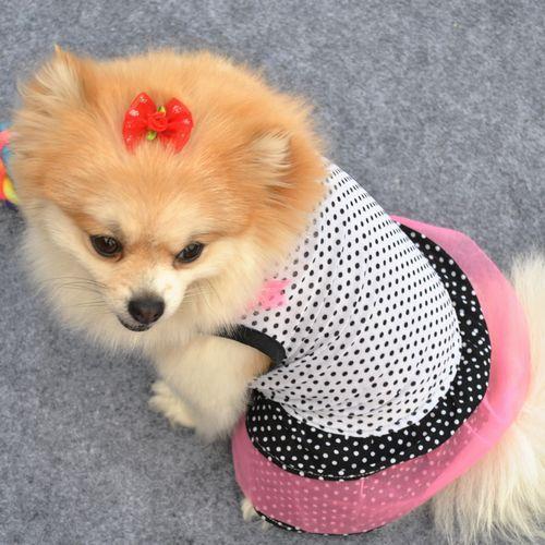 одежда с точкой черного и белого цвета для малых собак, одежда для собак,одежда лето для собак, шифонное цветное платье как торт,платье для животных