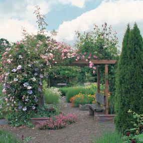 my dream backyard: Gardens Inspiration, Inspiration Bohemia, Dreams Backyard, Climbing Rose, Gardens Gates, Old Houses, Gardens Rose, Ornaments Edible, Yard Ideas