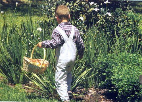 """ovinhos de chocolate com recheio de coco? ou acucarFondant?, escondidos no gramado do jardim para serem achados durante a pascoa // Páscoa nos Estados Unidos - Tradições Americanas - A brincadeira mais tradicional ainda é a """"caça ao ovo"""", onde ovos de chocolate são escondidos pelo quintal, jardim ou pela casa para serem descobertos pelas crianças na manhã de Páscoa"""