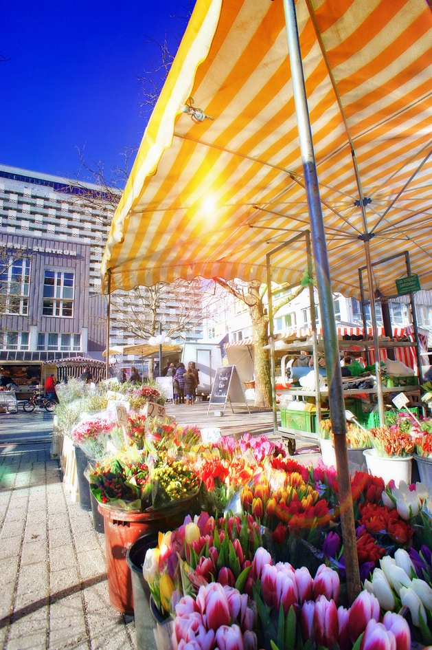 Wohnungssuche München: Wohnung mieten und Wohnung kaufen in München - Munich Property