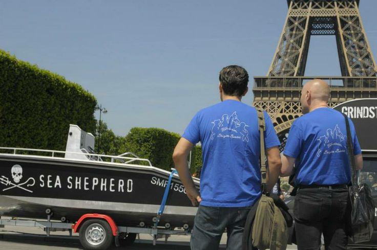 Sea Sheperd and Fondation Brigitte Bardot