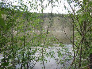 Les eaux de la rivière Klondike à Dawson City