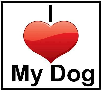 <3 Zeus: Sayings, Animals, Dogs, Stuff, Quotes, Pets, Love My Dog