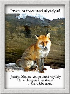 Jemina Staalon multimediavakka: Näyttelykuvia: 1986-2015: