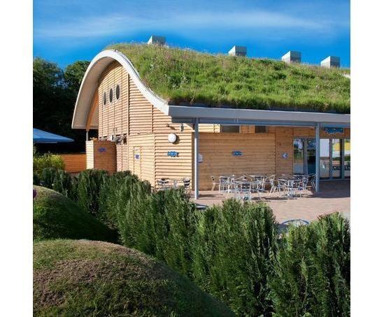 Green roof, Peppa Pig World, Hampshire. Wildflower Turf / architects HPW Partnership
