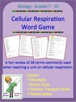 FREE!  There are 28 vocabulary words used in this exercise that are commonly used in a unit on cellular respiration. The vocabulary words are: pyruvic acid, protons, glucose, aerobic, matrix, adenosine triphosphate, ATP synthase, water, adenine, respiration, oxygen, lactic acid, Kreb's cycle, alcoholic, phosphate, glycolysis, citric acid, NADH, electron transport chain, cristae, mitochondria, carbon dioxide, fermentation, cytoplasm, thirty eight, anaerobic, ribose, and acetate.