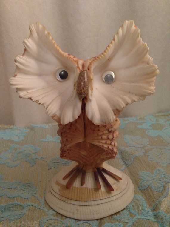 Owl Made out of Sea Shells