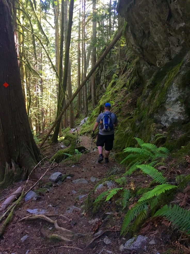 Hiking the Sigurd Trail to Crooked Falls in Squamish, British Columbia