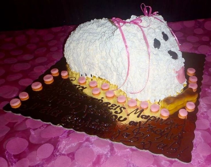 Handmade birthday cake maltez puppy